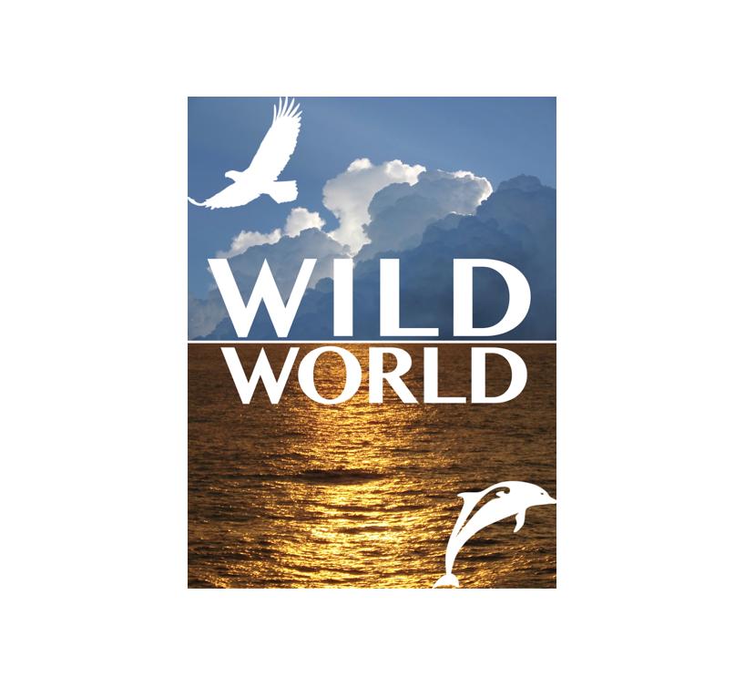 WildWorld B.V.